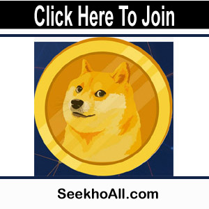 Photo of Dogechain Mining Website | Utilize Online Wallet & Perform Different Task |