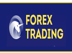Photo of Forex Trading Pro Website | Hourly High Earning Plans Site 2019 |