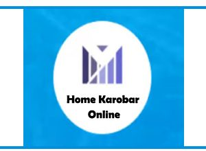 Photo of Offcial Karobar Online | Start Online Your Business With Trust In Pakistan |