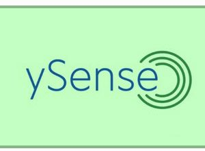 Y Sense | A Global Online Community With Multiple Earning Options |