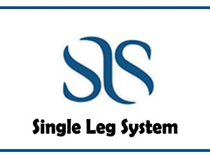 Photo of Single Leg System | New Automatic Fast Earning Site |